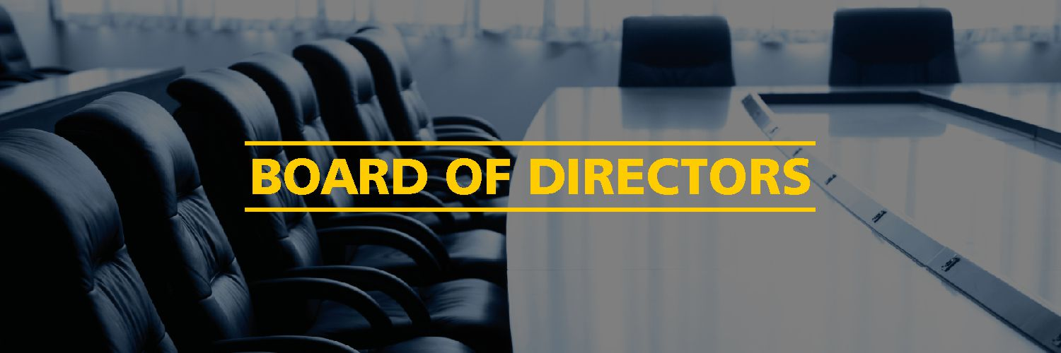 Director and the Board of Directors under the Companies Act, 2013
