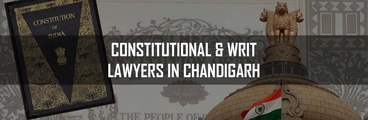 Constitutional and Writ Lawyers in Chandigarh