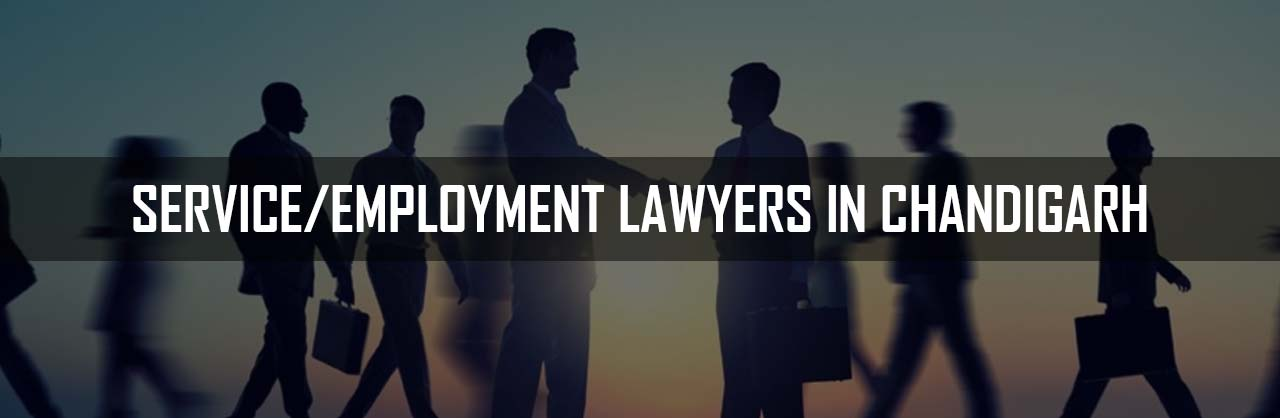 Service Employment Lawyers in Chandigarh
