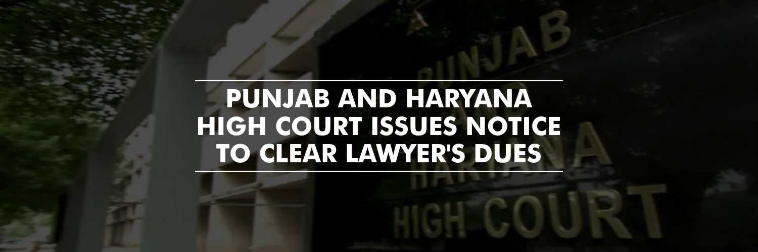 The Punjab And Haryana High Court Warns Officials to Clear the Lawyer's Dues