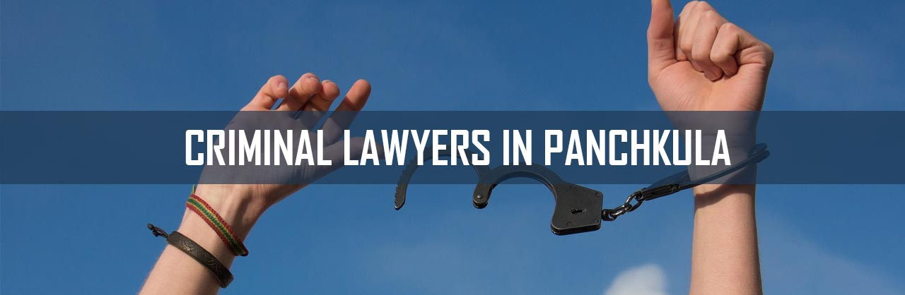 Criminal Lawyers in Panchkula