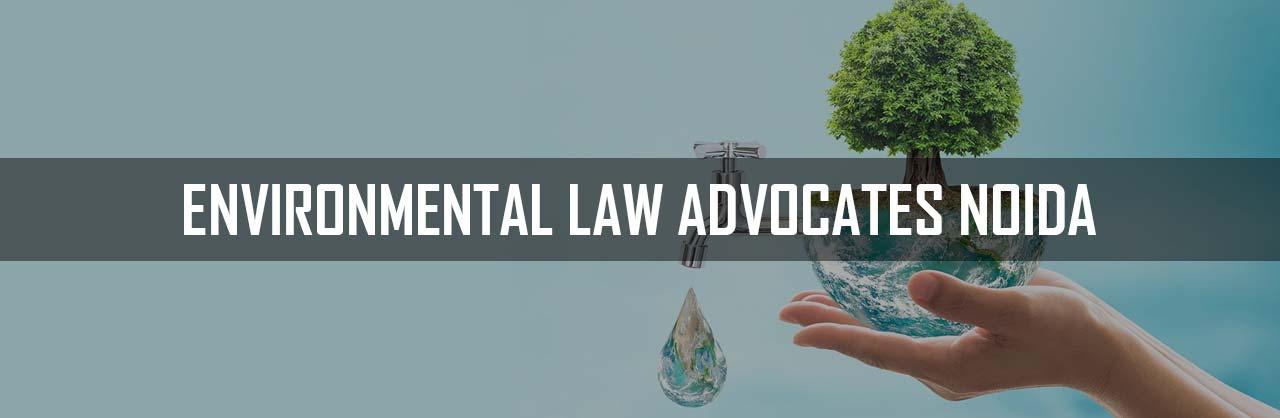 Environmental Law Advocates in Noida