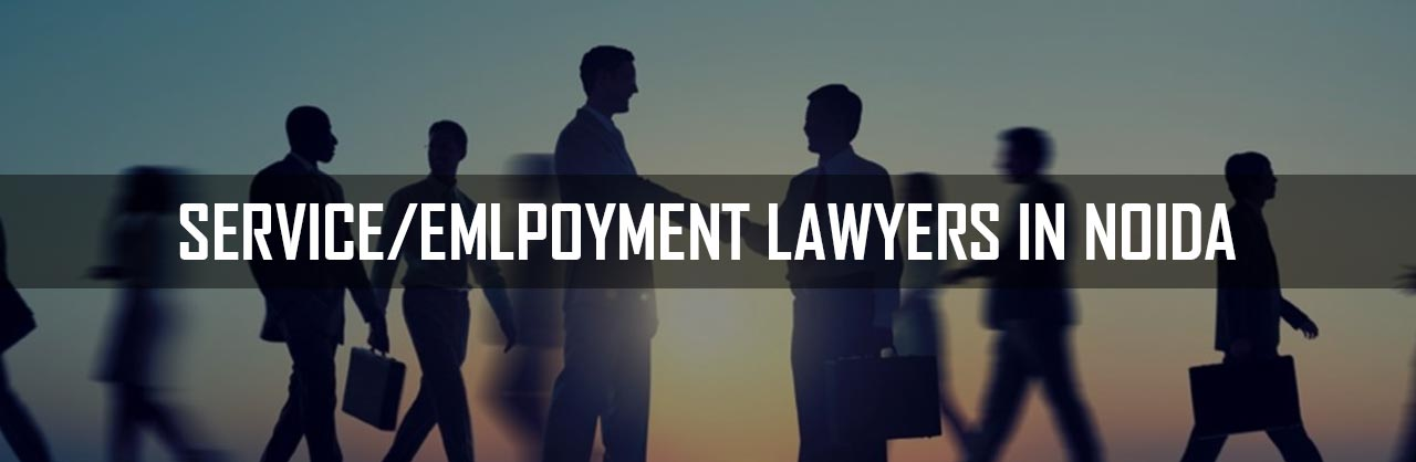 Service-Employemet-Lawyers-in-Noida