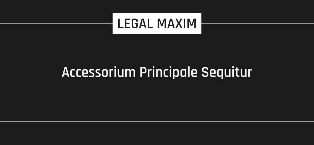 Accessorium Principale Sequitur