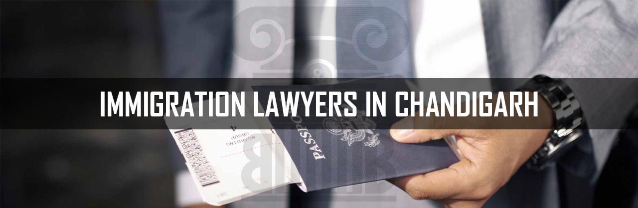 Immigration-Lawyers-in-Chandigarh