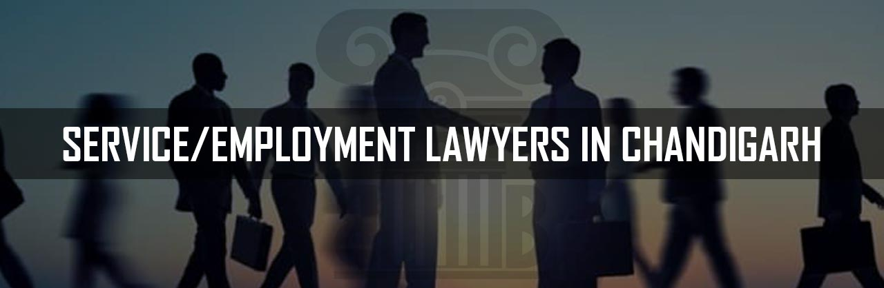 Service-Employment-Lawyers-in-Chandigarh
