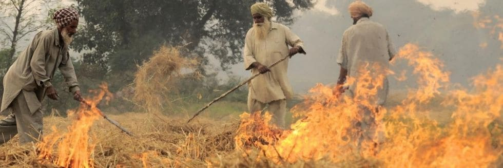 SC appoints the former judge of apex court to monitor steps to prevent stubble burning