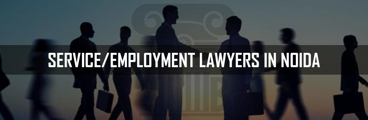 Service Employment Lawyers in Noida