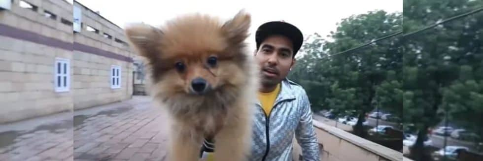 YouTuber Gaurav Sharma Arrested for Floating Dog In Air Using Helium Balloons