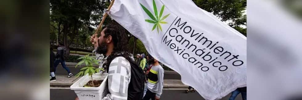 Mexico Supreme Court Decriminalised Recreational Use of Marijuana