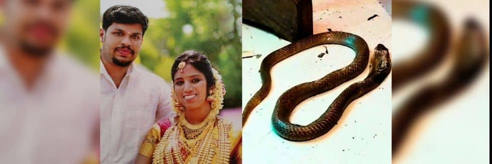 Kerala Court Found Husband Guilty of Using Venomous Snakes Twice To Kill Wife: Uthra Murder Case